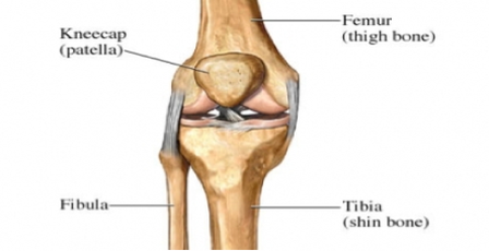 Skiing; Have You Harmed Your Knee On The Inclines?